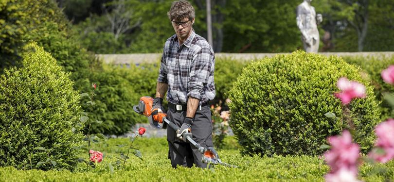 Curso on line sobre introducci n al dise o y mantenimiento for Mantenimiento de jardines